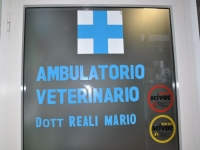 Porta Ambulatorio Veterinario